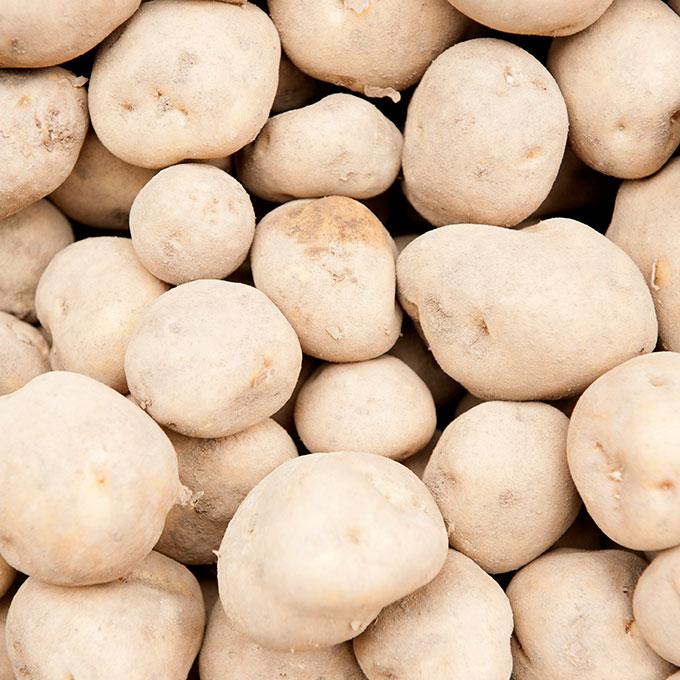 aussehen der kartoffel